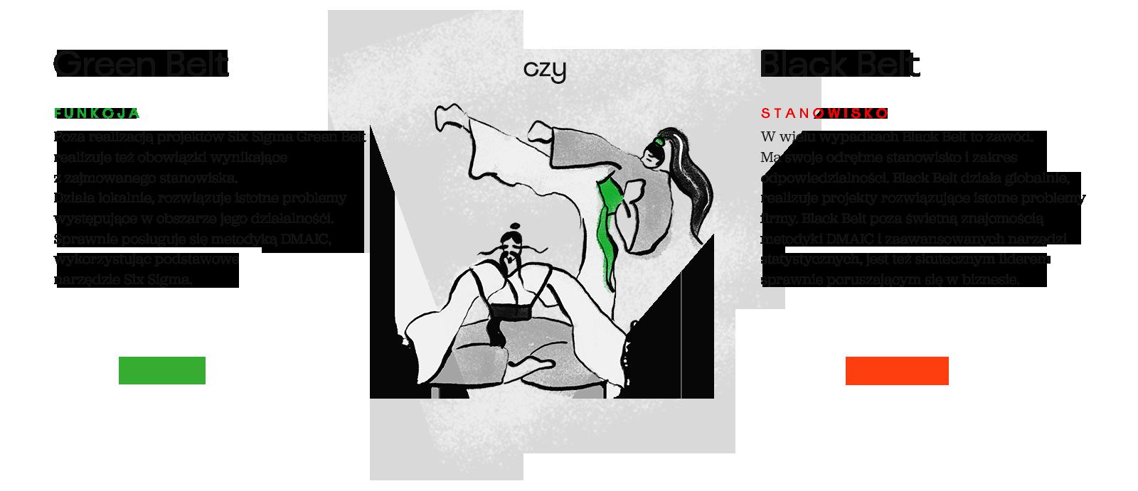 Black Belt Green Belt porównanie